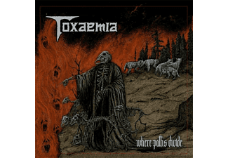 Toxaemia - Where Paths Divide  - (Vinyl)