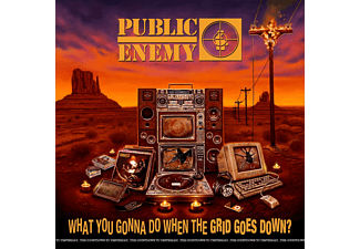Public Enemy - What You Gonna Do When The Grid Goes Down? (CD)