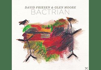 David Friesen - BACTRIAN  - (CD)