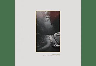 Steve Bug - NEVER ENDING WINDING ROADS (2LP+MP3)  - (LP + Download)
