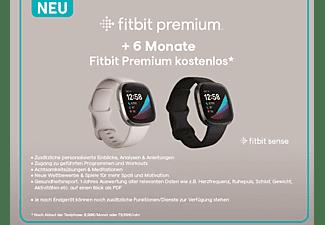 FITBIT Smartwatch Sense Stainless Steel, Lunar White/Soft Gold