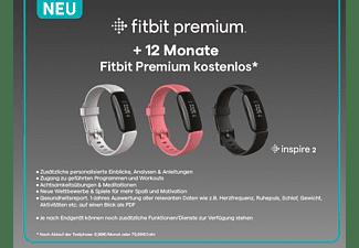 FITBIT Fitnesstracker Inspire 2, Lunar White/Black