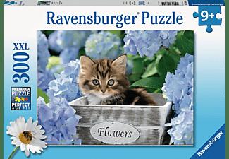 RAVENSBURGER Kleine Katze Puzzle Mehrfarbig