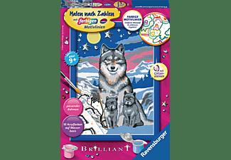 RAVENSBURGER Süße Wolfsfamilie Malset Mehrfarbig