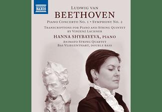 Shybayeva,H/Vliegenthart,B./Animato String Quartet - PIANO CONCERTO NO. 1 - SYMPHONY NO. 2 (TRANSCRIPTI  - (CD)