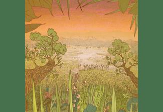Pine Barons - MIRAGE ON THE MEADOW  - (Vinyl)