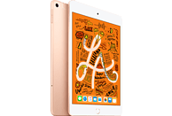 APPLE iPad mini (2019) WiFi + Cellular, Tablet, 256 GB, 7,9 Zoll, Gold