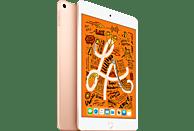 APPLE iPad mini (2019) WiFi, Tablet, 256 GB, 7,9 Zoll, Gold