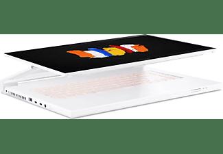 ACER Convertible ConceptD 7 Ezel Pro CC715-91P-X920, W-10885M, 32GB/2TB, RTX 5000, 15.6 Zoll 4K