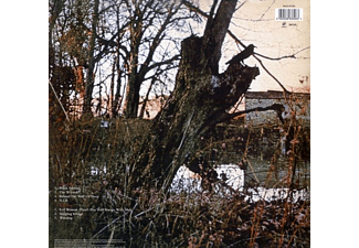 Black Sabbath - BLACK SABBATH  - (Vinyl)