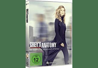 Grey's Anatomy - Die komplette sechzehnte Staffel DVD