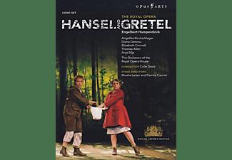 VARIOUS, Covent Garden Orchestra - Hänsel Und Gretel  - (DVD)