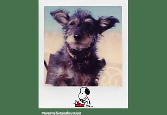 POLAROID Sofortbildfilm Color i‑Type Film Peanuts Edition