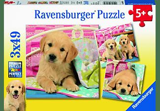 RAVENSBURGER Kuschelige Hündchen Puzzle Mehrfarbig