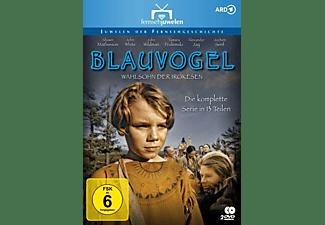 Blauvogel-Die komplette Serie in 13 Teilen DVD