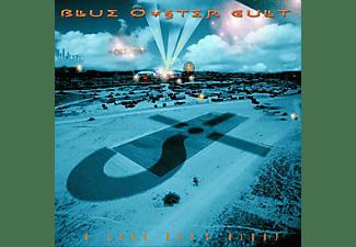 Blue Öyster Cult - A Long Day's Night (ltd.2LP/GTF/Black Vinyl)  - (Vinyl)