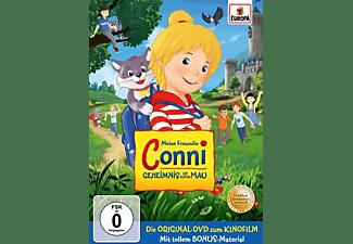 GEHEIMNIS UM KATER MAU (KINO-FILM) DVD