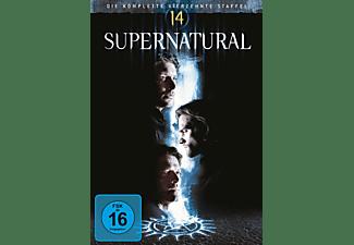 Supernatural - Staffel  14 DVD