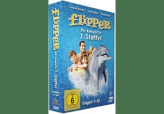 Flipper - Staffel 1 DVD