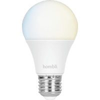 HOMBLI HBEB-0125  Glühbirne Weiß