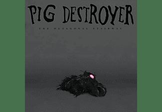 Pig Destroyer - OCTAGONAL STAIRWAY  - (Vinyl)