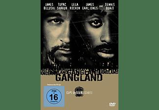 Gangland - Cops Unter Beschuss DVD