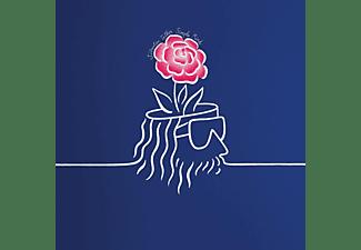 Sébastien Tellier - Simple Mind  - (Vinyl)