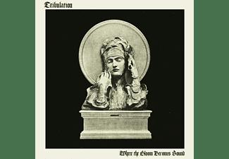 Tribulation - Where the Gloom Becomes Sound  - (Vinyl)