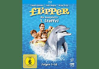 Flipper-Die komplette 1.Staffel (3 Blu-rays) (F Blu-ray