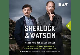 Viviane Koppelmann - Sherlock And Watson-Neues aus der Baker Street: Di  - (CD)