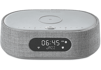 HARMAN KARDON Citation Oasis Lautsprecher App-steuerbar, Bluetooth, Grau