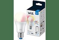 Bombilla inteligente - Wiz A60 60W E27, Luz blanca y color, WiFi y Bluetooth,  Control por voz