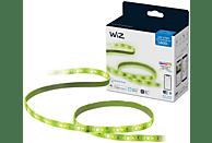 Luces LED - Wiz W-BT 1600LM, Tira inteligente y alimentador, 2 metros, Wifi y Bluetooth, Control por voz