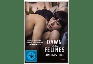 Dawn of the Felines - Sündiges Tokio DVD