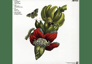 Blumfeld - Verbotene Früchte (New Vinyl Edition) [Vinyl]