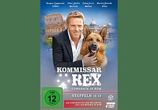 Kommissar Rex-Comeback in Rom (Staffeln 11-13) DVD