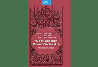 Mutter/Ma/Barenboim/West Eastern Divan Orchestra - Tripelkonzert/Sinfonie 9  - (DVD)