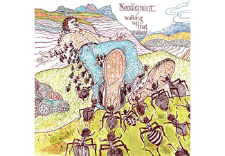 Needlepoint - Walking Up That Valley  - (CD)