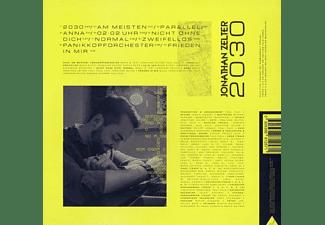 Jonathan Zelter - 2030  - (Vinyl)