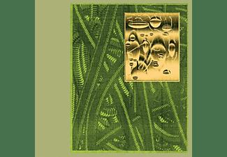 De Beren Gieren - Less Is Endless [CD]
