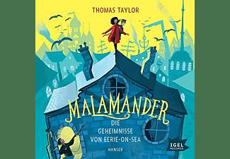 Thomas Taylor - Malamander  - (CD)
