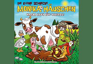 Die Kleine Schnecke Monika Häuschen - 60: Warum Kauen Kühe Immerzu?  - (CD)