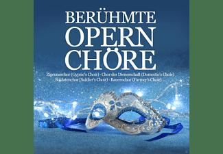 VARIOUS - Berühmte Opernchöre  - (CD)