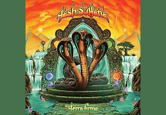 Tash Sultana - TERRA FIRMA  - (Vinyl)