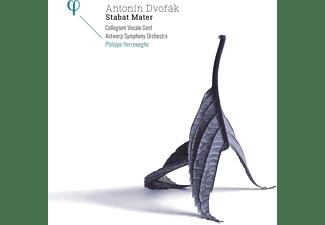 Collegium Vocale Gent, Antwerp Symphony Orchestra - Stabat Mater  - (Vinyl)
