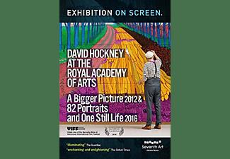 DAVID HOCKNEY AT THE ROYAL ACADEMY OF ARTS DVD