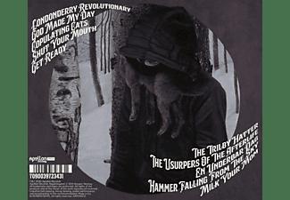 Ping - The Zig Manoeuvre  - (CD)