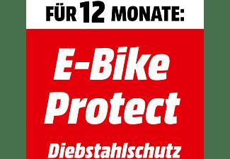 E-Bike Diebstahlschutz 12 Monte (E-BIKE PROTECT 1J DIEB. PG13)