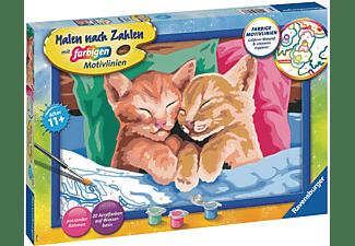RAVENSBURGER Verschmuste Kätzchen Malen nach Zahlen Erwachsene Mehrfarbig