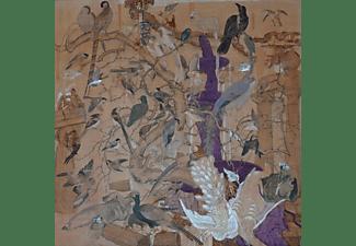 Howie Lee - Birdy Island  - (CD)